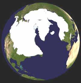 bumi4
