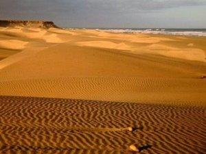 gurun-sahara