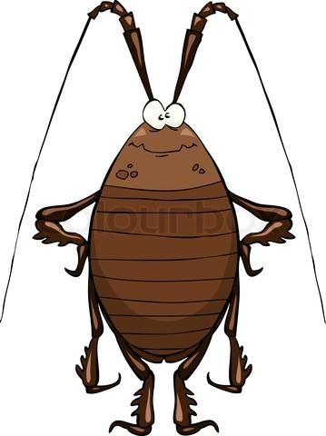 4253060-809986-cockroach